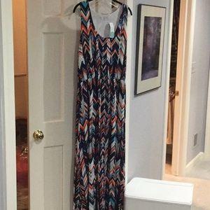 NWT reneec.maxi dress, 2X